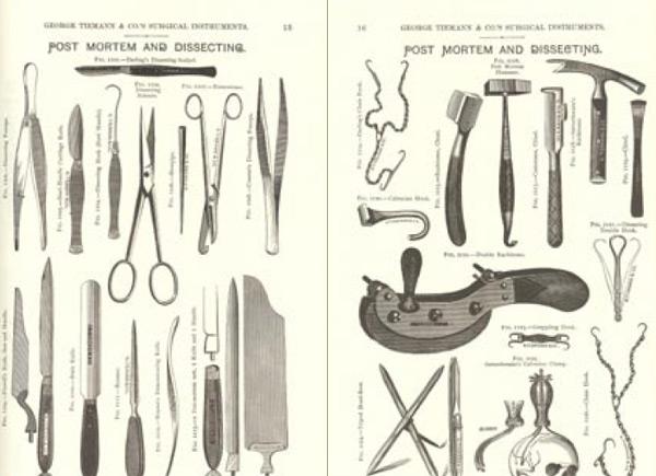 why look at animals john berger pdf